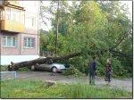Минувшая Гроза наломала дров